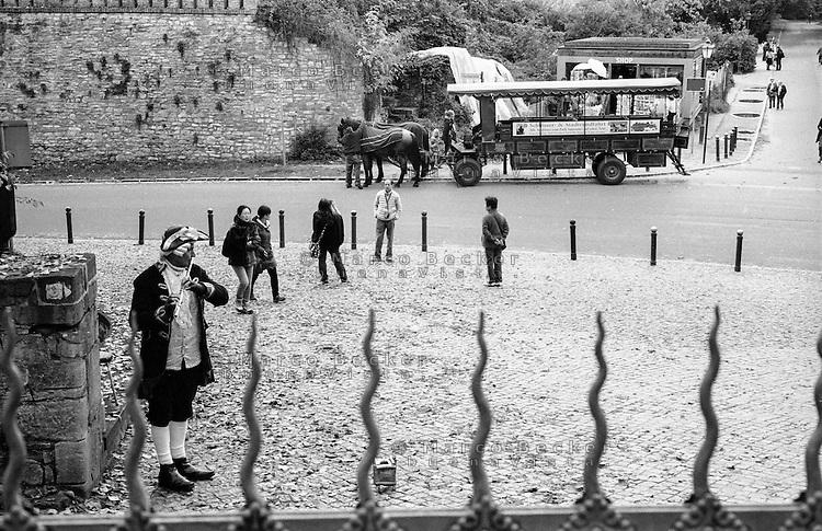 Potsdam, parco di Sanssouci. Musicista di strada suona flauto traverso con travestimento settecentesco e sullo sfondo carrozza a cavalli per tour turistico --- Potsdam, Sanssouci Park. A street musician with eighteenth-century costume playing transverse flute and on the background horse carriage for sightseeing tour