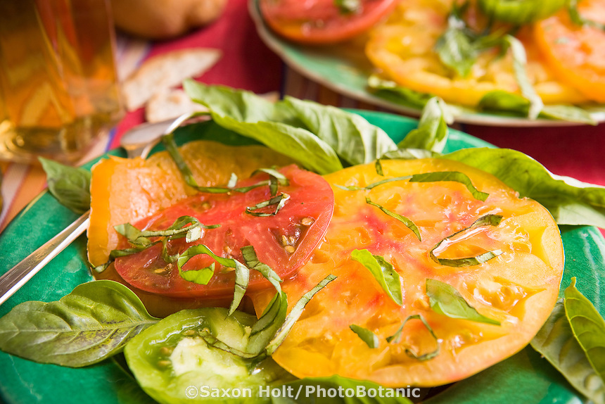 Fresh garden herb basil on organic heirloom tomatoes for country picnic