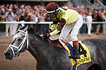 Graydar and jockey Edgar Prado win the Donn Handicap (G1) at Gulfstream Park.  Hallandale Beach Florida. 02-09-2013