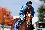 18 October 2009: Jockey Kent Desormeax gallops his mount back to the grandstand after one of the races at Keeneland.