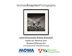 Michael Knapstein was one of just 39 artists to have work selected for the 2020 Wisconsin Artists Biennial exhibit at the Museum of Wisconsin Art in West Bend, Wisconsin. The exhibit was organized by the Wisconsin Visual Artists organization.