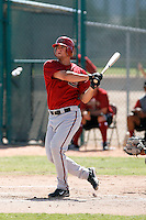 Matt Helm - Arizona Diamondbacks 2009 Instructional League .Photo by:  Bill Mitchell/Four Seam Images..