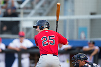 Brent Rooker (25) of the Elizabethton Twins at bat against the Danville Braves at American Legion Post 325 Field on July 1, 2017 in Danville, Virginia.  The Twins defeated the Braves 7-4.  (Brian Westerholt/Four Seam Images)