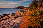 Sunrise on Ocean Path in Acadia National Park, Downeast, ME, USA