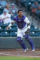 Winston-Salem Dash catcher Yermin Mercedes (6) on defense against the Myrtle Beach Pelicans at BB&T Ballpark on August 6, 2018 in Winston-Salem, North Carolina. The Dash defeated the Pelicans 6-3. (Brian Westerholt/Four Seam Images)