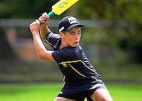 161124 Cricket - Masterton Secondary Schools Backyard Cricket Tournament