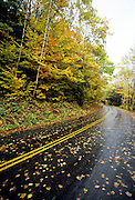 Autumn colors along Tripoli Road in the White Mountains, New Hampshire USA. Parts of this road follows the old  Woodstock & Thornton Gore Railroad which was in operation from 1909 - 1914.