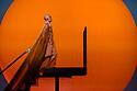 "London, UK. 08.03.2019. English National Opera, in collaboration with Improbable, presents ""Akhnaten"", composed by Philip Glass, and directed by Phelim McDermott. Set design is by Tom Pye, costume design by Kevin Pollard and lighting design by Bruno Poet. Sean Gandini is the skills ensemble choreographer. The cast is: Anthony Roth Costanzo (Akhnaten), Katie Stevenson (Nefertiti), Rebecca Bottone (Queen Tye), James Cleverton (Horemhab), Keel Watson (Aye), Colin Judson (High Priest of Amon), Zachary James (Scribe), Charlotte Shaw, Hazel McBain, Rosie Lomas, Elizabeth Lynch, Martha Jones, and Angharad Lyddon (Daughters of Akhnaten), Ewan Hawkins (Young Tutankhamun). The jugglers are: Sean Gandini, Tedros Girmaye, Doreen Grossmann, Kim Huynh, Francesca Mari, Chris Patfield, Owen Reynolds, Inaki Sastre, Jose Triguero and Kati Yla-Hokkala. Picture shows: Anthony Roth Costanza (Akhnaten). Photograph © Jane Hobson."