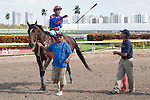 Connections of Social Inclusion with Luis Contreras up, celebrate their win over favorite Honor Code in a 3 year old allowance race at Gulfstream Park, Hallandale Beach Florida. 03-12-2014