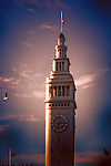 San Francisco's Ferry Building with flag and seagull