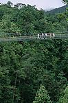 Balade dans la jungle du parc de Morne trois pitons Ile de la Dominique.