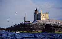 Birds pass at lonely Tjärven Lighthouse in the outer Stockholm Archipelago in Sweden.