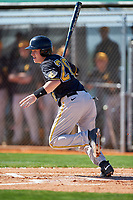 dIowa Hawkeyes designated hitter Austin Guzzo (20) at bat during a game against the Dartmouth Big Green on February 27, 2016 at South Charlotte Regional Park in Punta Gorda, Florida.  Iowa defeated Dartmouth 4-1.  (Mike Janes/Four Seam Images)