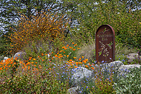 Hummingbird Hill, California native plant display garden in spring with wildflowers at Southern California Montane Botanic Garden