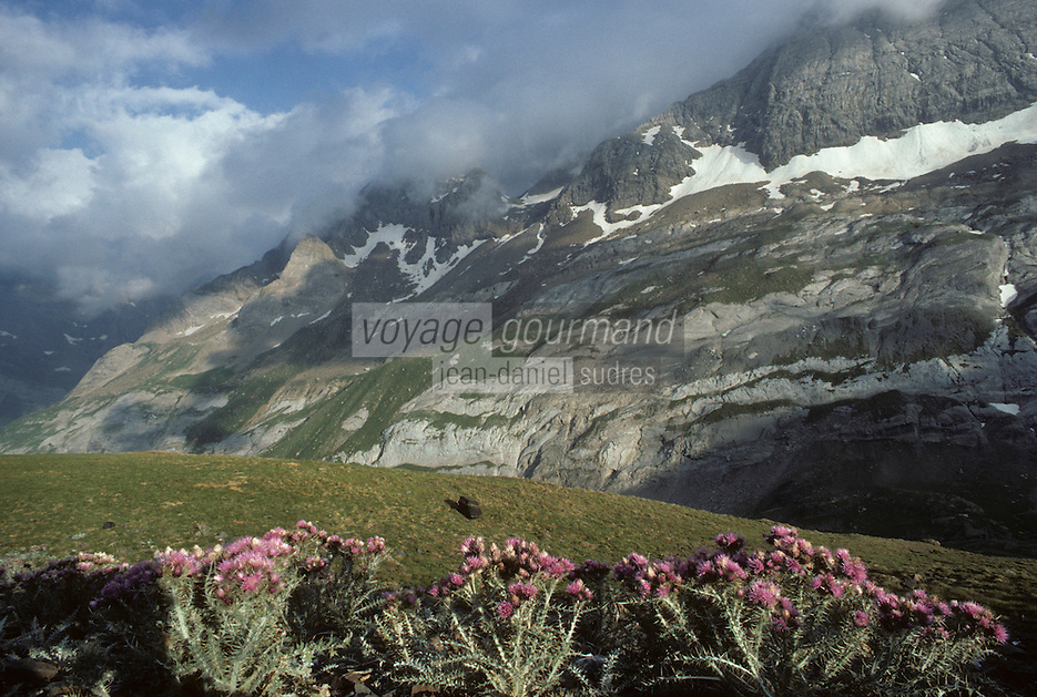 Europe/France/Midi-Pyrénées/65/Hautes-Pyrénées/Parc National des Pyrénées/Le cirque de Gavarnie: Les Gabietous