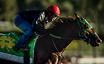 ARCADIA, CA - OCTOBER 22: Corey Nakatani sits atop Bolt d'Oro during a workout at Santa Anita Park on October 22, 2017 in Arcadia, California. (Photo by Alex Evers/Eclipse Sportswire/Getty Images)