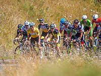 The peloton (including James Oram, yellow jersey) approaches the top of Millar's Road during stage three of the NZ Cycle Classic UCI Oceania Tour in Wairarapa, New Zealand on Tuesday, 24 January 2017. Photo: Dave Lintott / lintottphoto.co.nz