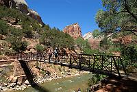 4415 / Zion Nationalpark: AMERIKA, VEREINIGTE STAATEN VON AMERIKA, UTAH,  (AMERICA, UNITED STATES OF AMERICA), 25.05.2006:gute Wege, Wanderwege,  im Zion Canyon, Weg , Bruecke zum Angels Landing (Bildmitte) und West Rim Trail. Der Zion-Nationalpark befindet sich im Suedwesten Utahs an der Grenze zu Arizona. Er hat eine Flaeche von 593 km² und liegt zwischen 1128 m (Coalpits Wash) und 2660 m Hoehe (Horse Ranch Mountain). 1909 wurde das Gebiet des Canyons zum Mukuntuweap National Monument ernannt, seit 1919 besitzt er den Status eines Nationalparks. Der Park wurde 1937 um den Kolob Canyon erweitert. Zion ist ein altes hebraeisches Wort und bedeutet soviel wie Zufluchtsort oder Heiligtum, welches oft von den mormonischen Siedlern in Utah benutzt wurde. Innerhalb des Parks befindet sich eine schluchtenreiche Landschaft mit zahlreichen Canyons, von denen der Zion Canyon und der Kolob Canyon die bekanntesten sind. Die Canyons sind aus 170 Millionen Jahre altem braunen bis orangeroten Sandstein der Navajo-Formation entstanden. Der Park liegt an der Grenze zwischen dem Colorado-Plateau, dem Great Basin und der Mojave-Wueste. Durch seine besondere geografische Lage existieren im Park eine Vielzahl an unterschiedlichen Lebensraeumen mit vielen verschiedenen Pflanzen und Tieren...