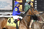 January 16, 2021: Proxy in the Lecomte Stakes Day at Fair Grounds Race Course in New Orleans, Louisiana. Parker Waters/Eclipse Sportswire/CSM