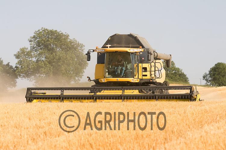 New Holland Combine Harvesting Grain