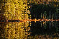 Sunset at Whortleberry Pond in the Pharoah Lake Wilderness Area in the Adirondack Mountains in New York State