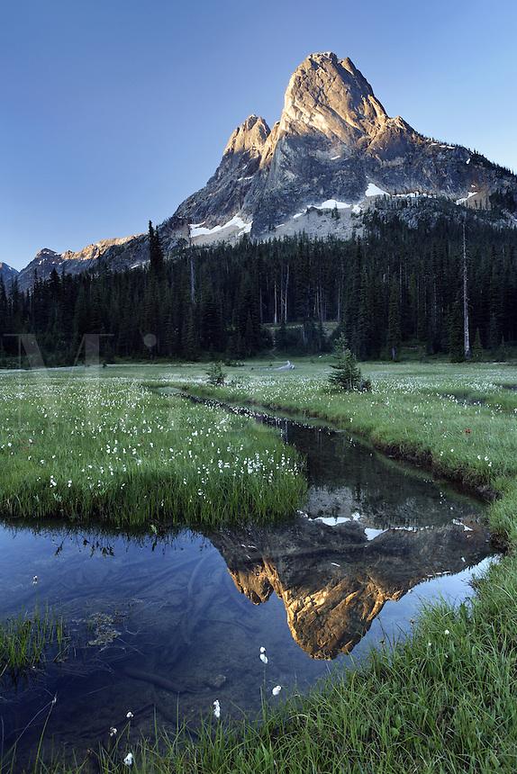 Pond below Liberty Bell Mountain, Washington Pass, Hwy 20, Wenatchee National Forest, North Cascades, Washington<br />