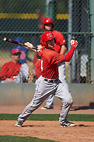 Los Angeles Angels catcher Taylor Ward (14) during an instructional league game against the Oakland Athletics on October 9, 2015 at the Tempe Diablo Stadium Complex in Tempe, Arizona.  (Mike Janes/Four Seam Images)