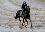 September 2, 2020: South Bend exercises as horses prepare for the 2020 Kentucky Derby and Kentucky Oaks at Churchill Downs in Louisville, Kentucky. The race is being run without fans due to the coronavirus pandemic that has gripped the world and nation for much of the year. Scott Serio/Eclipse Sportswire/CSM