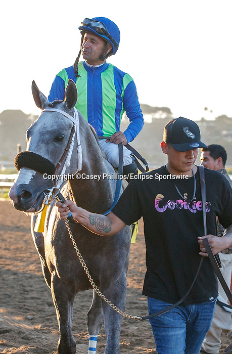 DEL MAR, CA  SEPTEMBER 4: #4 None Above the Law, ridden by Joe Bravo, returns to the connections after winning the Del Mar Derby (Grade ll) on September 4, 2021, with Del Mar Thoroughbred Club in Del Mar, CA. (Photo by Casey Phillips/Eclipse Sportswire/CSM)