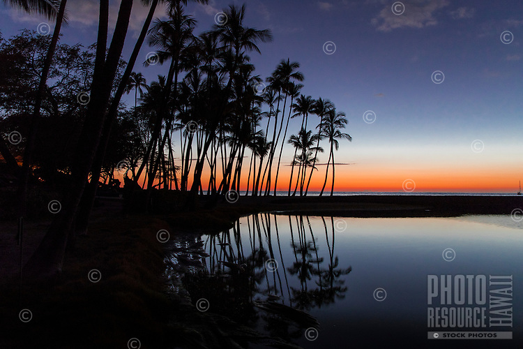Palm trees are silhouetted by sunset at 'Anaeho'omalu Bay, with Ku'uali'i Fishpond in the foreground, Big Island of Hawai'i.
