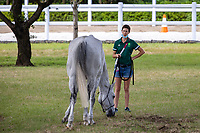 The Eventers enjoy the wonderful grounds to excercise, graze, relax and school their horses. Tokyo 2020 Olympic Games. Saturday 31 July 2021. Copyright Photo: Libby Law Photography