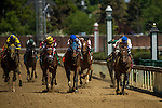 MAY 1, 2015: Molly Morgan, ridden by Corey J. Lanerie, leads the field near the finish line during the 30th running of The La Troienne at Churchill Downs in Louisville, Kentucky. Jon Durr/ESW/CSM