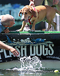 Images from the Splash Dogs event at the Reno River Festival, in Reno, Nev., on Friday, June 15, 2012..Photo by Cathleen Allison