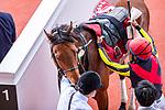 TAKARAZUKA,JAPAN-APR 25: Cadence Call,ridden by Yoshihiro Furukawa, after winning the Milers Cup at Hanshin Racecourse on April 25,2021 in Takarazuka,Hyogo,Japan. Kaz Ishida/Eclipse Sportswire/CSM