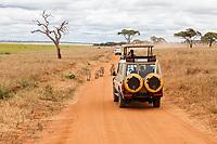 Tanzania. Tarangire National Park. Tourists Watching Lions near Silale Swamp.