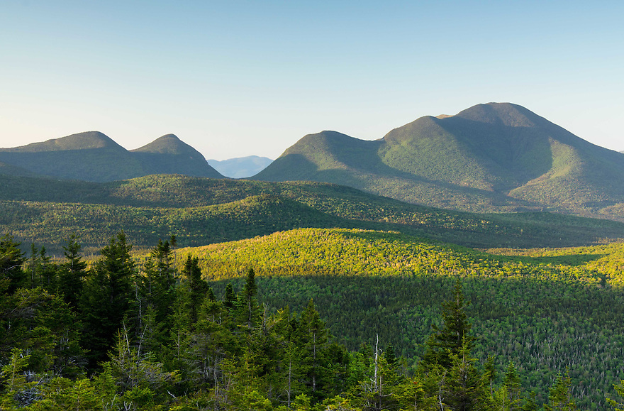 An early morning study of Carrigain Notch from across Zealand Valley