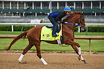 LOUISVILLE, KY - MAY 04: Gun Runner, trained by Steven Asmussen and owned by Winchell Thoroughbreds LLC and Three Chimneys Farm,  exercises and prepares during morning workouts for the Kentucky Derby and Kentucky Oaks at Churchill Downs on May 4, 2016 in Louisville, Kentucky.(Photo by Samantha Bussanch/Eclipse Sportswire/Getty Images)