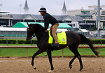 LOUISVILLE, KY -APR 25: Kentucky Derby hopeful My Boy Jack trains for the Kentucky Derby at Churchill Downs, Louisville, Kentucky. (Photo by Mary M. Meek/Eclipse Sportswire/Getty Images)