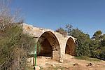 Israel, Jerusalem Mountains. Makam Sheikh el Ajami in Hamasrek reserve.