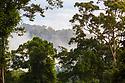 Lowland dipterocarp rainforest at dawn, Danum Valley, Sabah, Borneo. June.