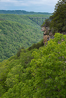 New River Gorge National Park, West Virginia.  New River Gorge Bridge from Endless Wall Trail Viewpoint.