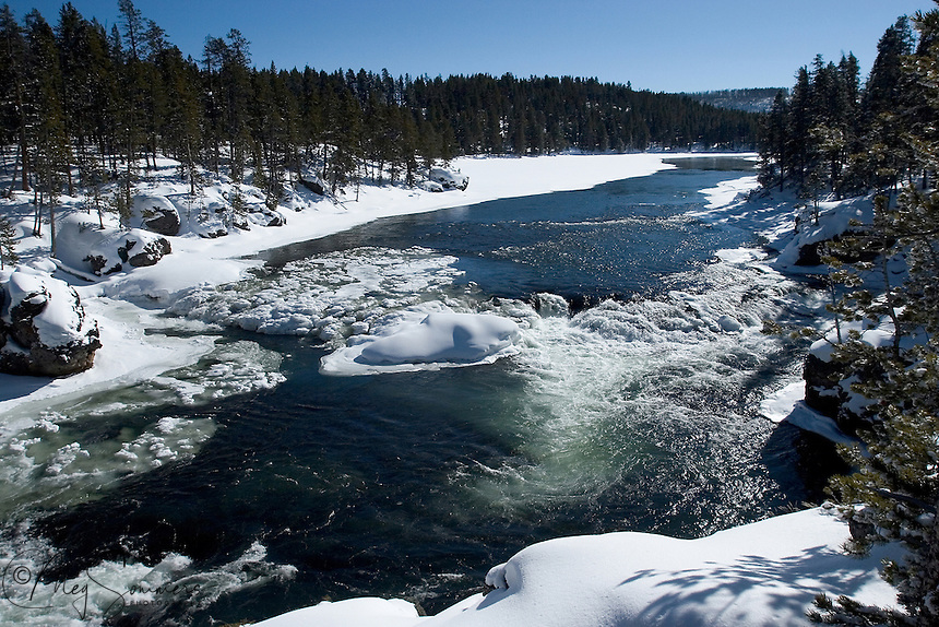 As winter begins to turn to spring in Yellowstone, the inhabitants are treated to some spectacular warm days. Winter isn't over, but everyone knows its days are numbered, at least for this season.