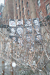 """portraits of 13 Iranian """"prisoners of rights"""""""