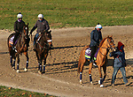 Uni, trained by trainer Chad C. Brown, exercises in preparation for the Breeders' Cup Mile and Rushing Fall, trained by trainer Chad C. Brown, exercises in preparation for the Breeders' Cup Filly & Mare Turf at Keeneland Racetrack in Lexington, Kentucky on November 3, 2020.