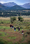 A family of five hiking in a meadow in Moraine Park, Rocky Mtn Nat'l Park, CO