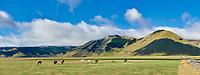 Piano Grande, Great Plain, of Castelluccio di Norcia, Parco Nazionale dei Monti Sibillini , Apennine Mountains,  Umbria, Italy.