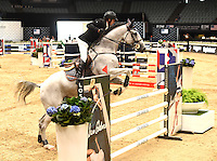 Guillaume Canet @ the Longines Masters (National jumping competition 'Just One Eye' trophy') held @ the Long Beach Convention center. September 29, 2016 , Los Angeles, USA. # NATIONAL JUMPING COMPETITION AT LONGINES MASTERS A LOS ANGELES