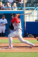 Jeff Diehl (24) of the Brooklyn Cyclones follows through on his swing against the Hudson Valley Renegades at Dutchess Stadium on June 18, 2014 in Wappingers Falls, New York.  The Cyclones defeated the Renegades 4-3 in 10 innings.  (Brian Westerholt/Four Seam Images)