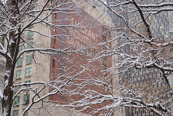 The former Emigrant Industrial Savings Bank Building at 49-51 Chambers Street in Lower Manhattan's Civic Center, Viewed thru snow covered trees in City Hall Park. New York City, New York State, USA.<br /> <br /> The Emigrant Bank was organized in 1850 by the trustees of the Irish Emigrant Society to protect the savings of newly arrived Irish imigrants and to teach them the virtues of savings and industry.  This limestone faced early skyscraper was built between 1908 and 1912 in the Beaux-Arts style by the architect Raymond F. Almirall.  The building, a designated New York City Landmark, is now owned by The City of New York and contains various city government offices.<br /> <br /> The building on the right side is the Jacob K. Javits Federal Office Buidling at 26 Federal Plaza.