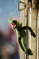 Denmark, puppet Kermit the frog in ship window